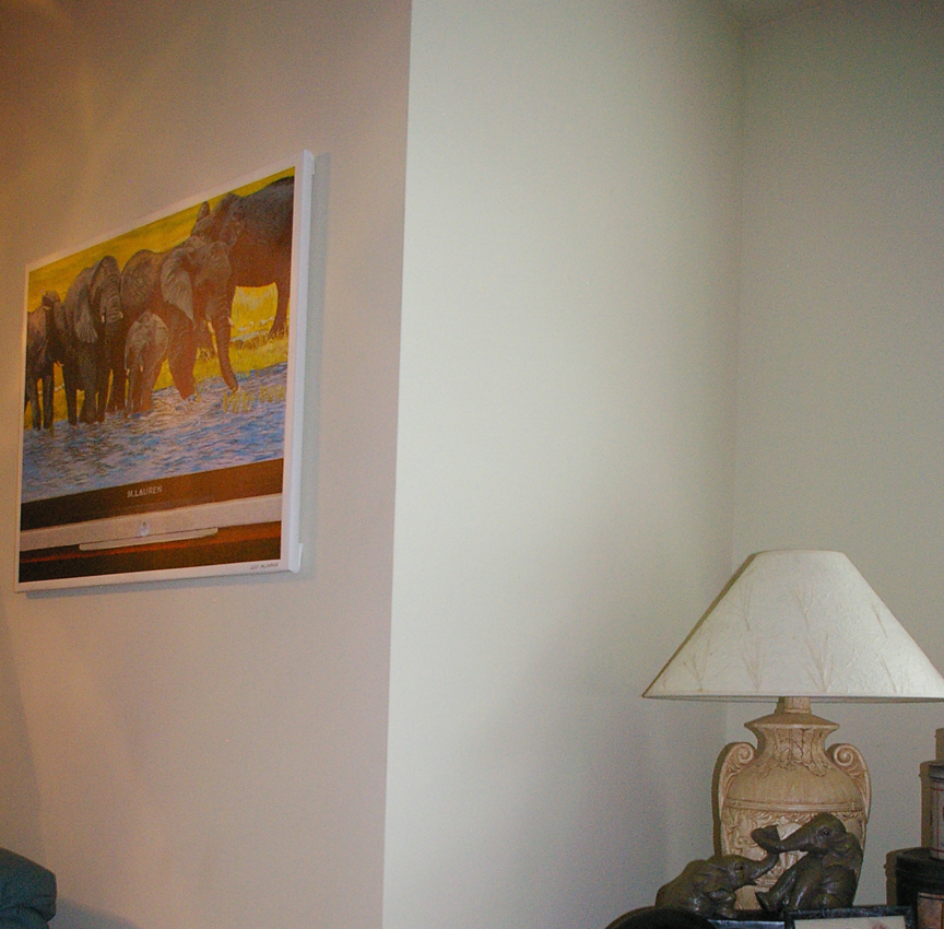 elephants-in-home.jpg